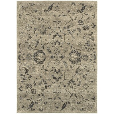 Alexander Home Rug Wayfair