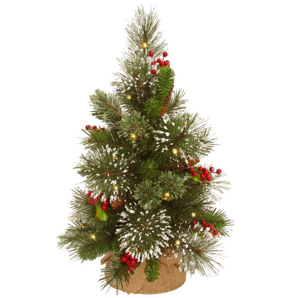 Wintry 18 Green Pine Artificial Christmas Tree with 15 LED Warm White by National Tree Co.