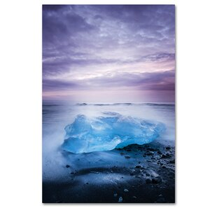 Overjoyed by Philippe Sainte-Laudy Photographic Print on Wrapped Canvas by Trademark Fine Art