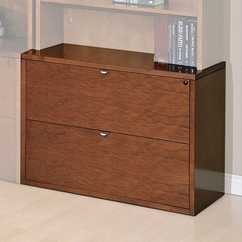 Lemasters 2 Drawer File by Darby Home Co
