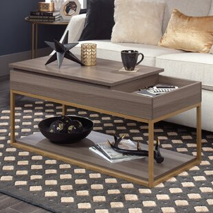 Broadridge Coffee Table with Storage By Willa Arlo Interiors