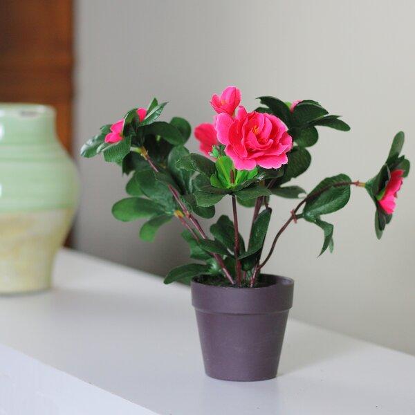 Artificial Hot Rose Floral Arrangement in Pot by Winston Porter