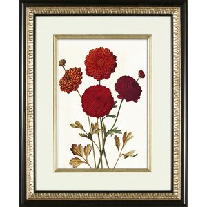 Deep Red Framed Graphic Art by PTM Images