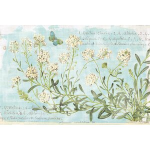 'Botany Blue I' Graphic Art Print on Canvas by Lark Manor