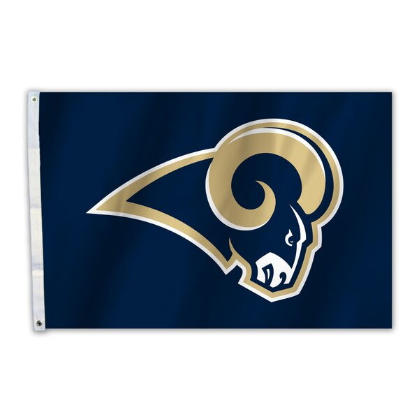 NFL Polyester 2 x 3 ft. Flag by Team Pro-Mark