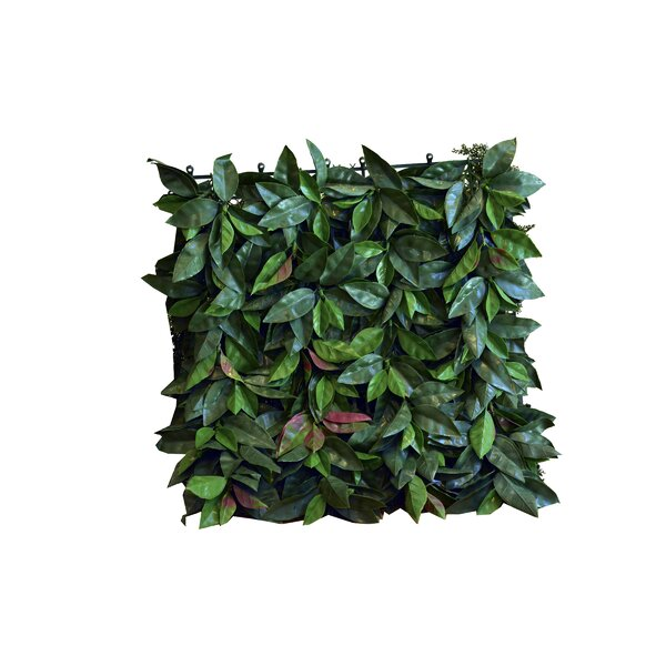 1.5 ft. H x 1.5 ft. W Artificial Leaf Laurel Fence Panel (Set of 4) by GreenSmart Dekor