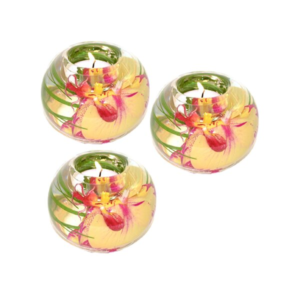 Phalaenopsis Orchid Glass Tealight (Set of 3) by Bloomsbury Market