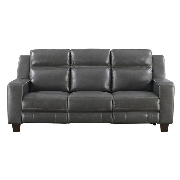Novice Reclining Sofa by Brayden Studio