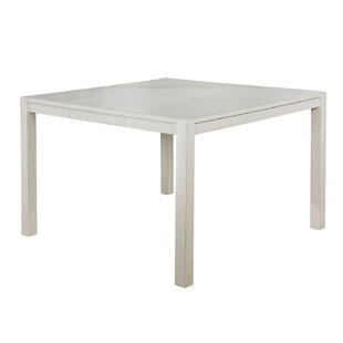 Big Save Saphira Counter Height Extendable Solid Wood Dining Table ByHighland Dunes