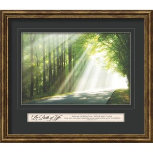 The Path of Life Framed Photographic Print by Carpentree
