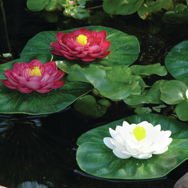 3 Piece Floating Lily Pad Set by Pond Boss