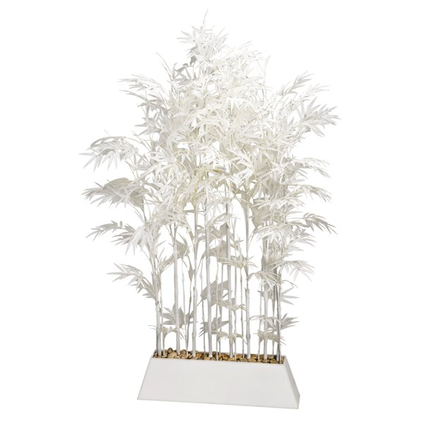 Screen Bamboo Tree in Planter by Bloomsbury Market