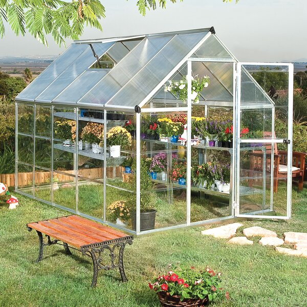 Shearson 6 Ft. W x 10 Ft. D Greenhouse by Darby Home Co