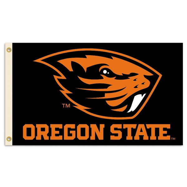 NCAA 2-Sided Polyester 3 x 5 ft. Flag by Team Pro-Mark