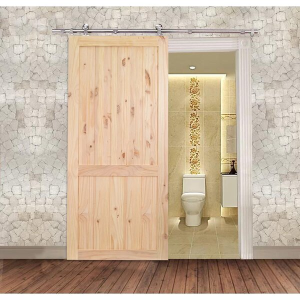Stainless Steel Unfinished 2-Panel Solid Wood Panelled Knotty Pine Slab Interior Barn Door by Calhome