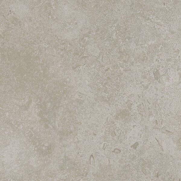Kent 18 W x 18 Porcelain Field Tile in Subtle Ivory by Parvatile