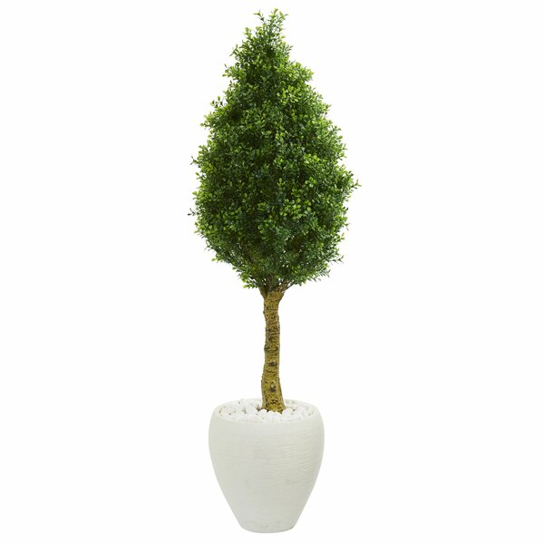 Cone Artificial Floor Boxwood Topiary in Planter by Bloomsbury Market