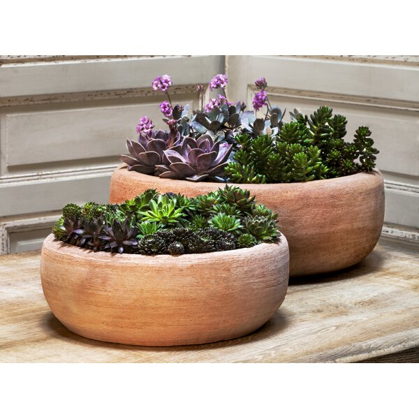 Cheyenne 2 Pieces Terracotta Pot Planter Set by Mistana