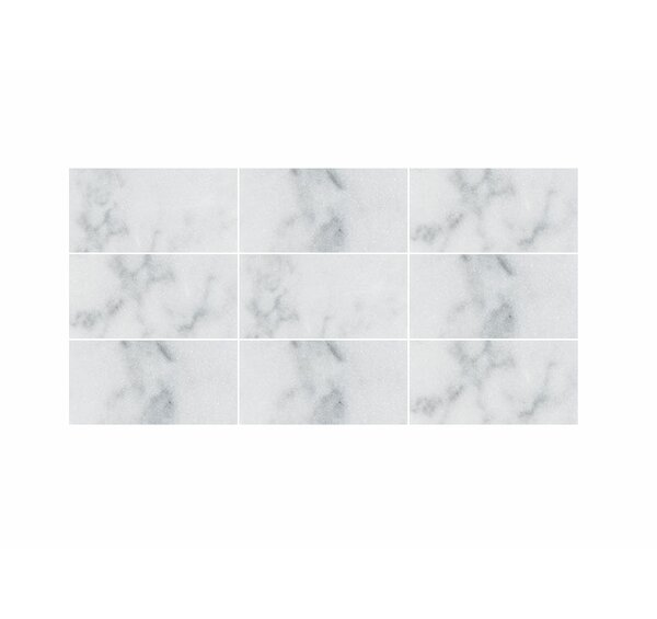Verona Marble 3 x 6 Marble Field Tile in Bianco Polished by Parvatile