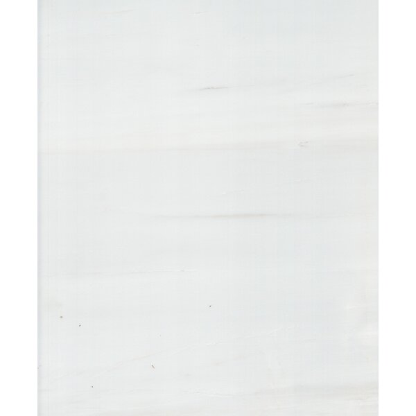 24 x 12 Dolomite Marble Tile in Polished White by Seven Seas