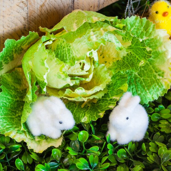2 Piece Fuzzy Bunny Mini Garden Statue Set (Set of 2) by August Grove