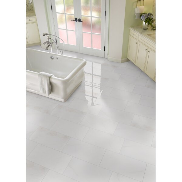 Bianco Dolomite 12 x 24 Marble Field Tile