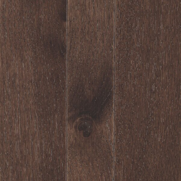 Charmaine 3-1/4 Solid Oak Hardwood Flooring in Matte Glossy Coffee Bean by Mohawk Flooring