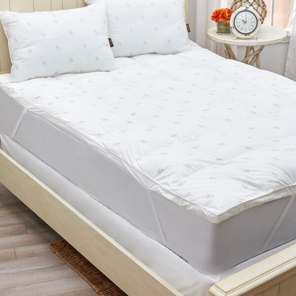 Giannone Fiber Bed Mattress Protector by Alwyn Home
