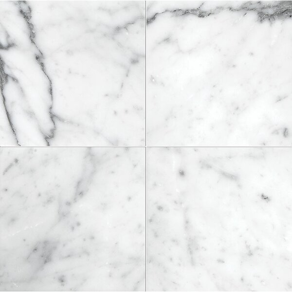 Carrara 6 x 6 Marble Field Tile in Polished White by Parvatile