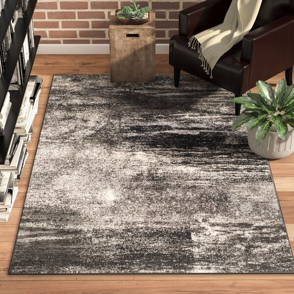 Costa Mesa Black, Silver/White Area Rug by Trent Austin Design