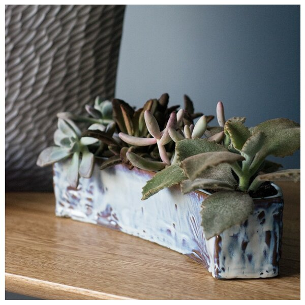 Crichton Hagi Bend Ceramic Pot Planter by Bungalow Rose