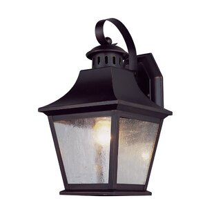 Best Reviews Owen 1-Light Outdoor Wall Lantern By Alcott Hill
