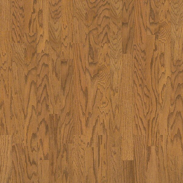 3-1/4 Engineered Oak Hardwood Flooring in Wheat by Wildon Home ®