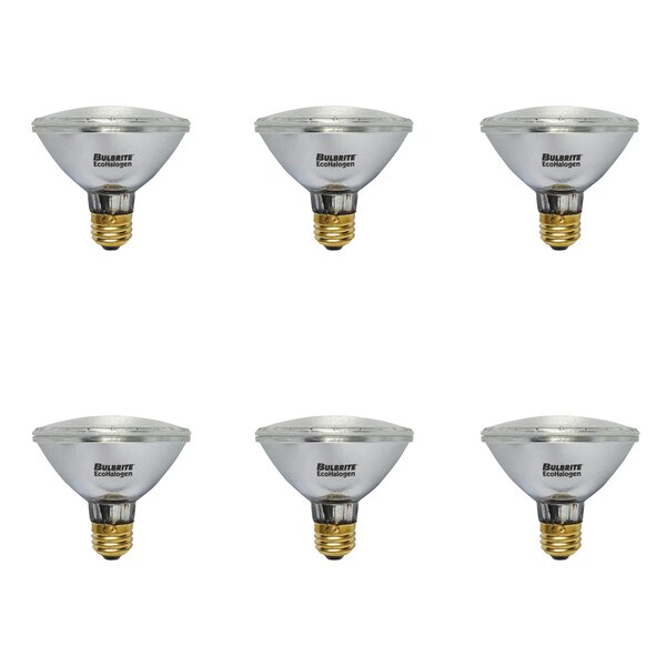 E26 Dimmable Halogen Spotlight Light Bulb (Set of 6) by Bulbrite Industries