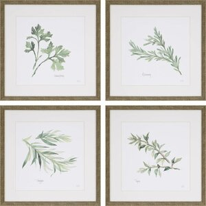 'Herbs' 4 Piece Framed Graphic Art Print Set by Lark Manor