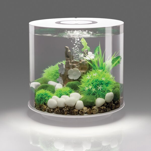 15 Led Aquarium Tank By Biorb.