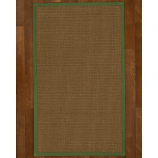 Aderyn Hand Woven Brown Area Rug by Bayou Breeze