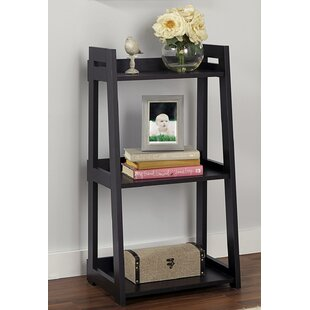 Narrow Ladder Bookcase