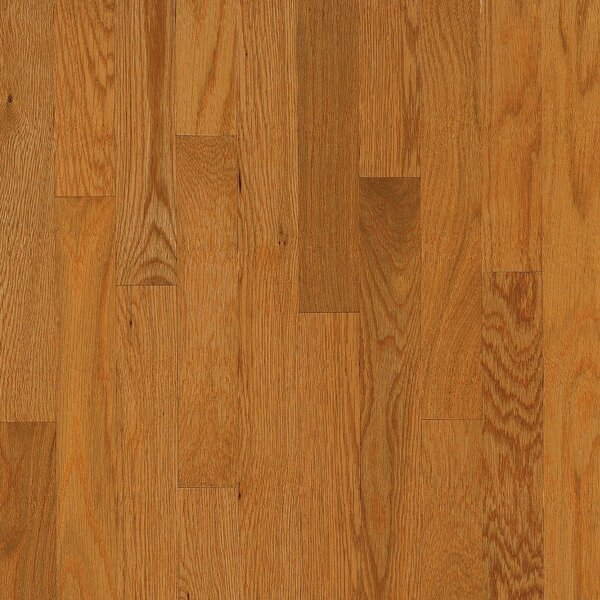 Dundee 3-1/4 Solid White Oak Hardwood Flooring in Butter Rum by Bruce Flooring