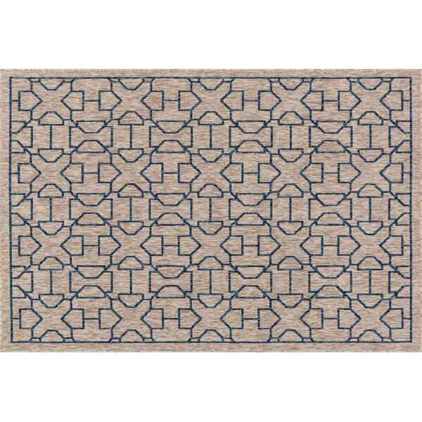 Summerfield Gray/Blue Indoor/Outdoor Area Rug by Bay Isle Home