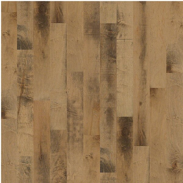 Anniston 5 Engineered Maple Hardwood Flooring in Noble by Shaw Floors