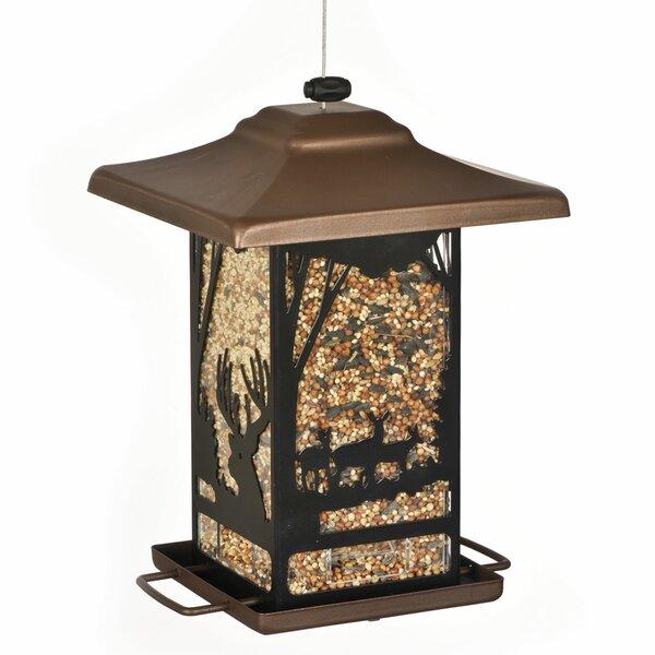 Wilderness Lantern Decorative Hopper Bird Feeder by Perky Pet