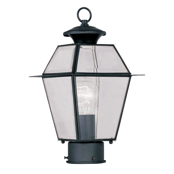 Orchard Lane Outdoor 1-Light Lantern Head by Three Posts