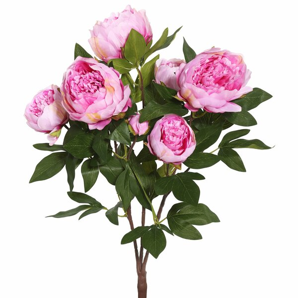 Peony Bush Floral Arrangement (Set of 6) by Willa Arlo Interiors