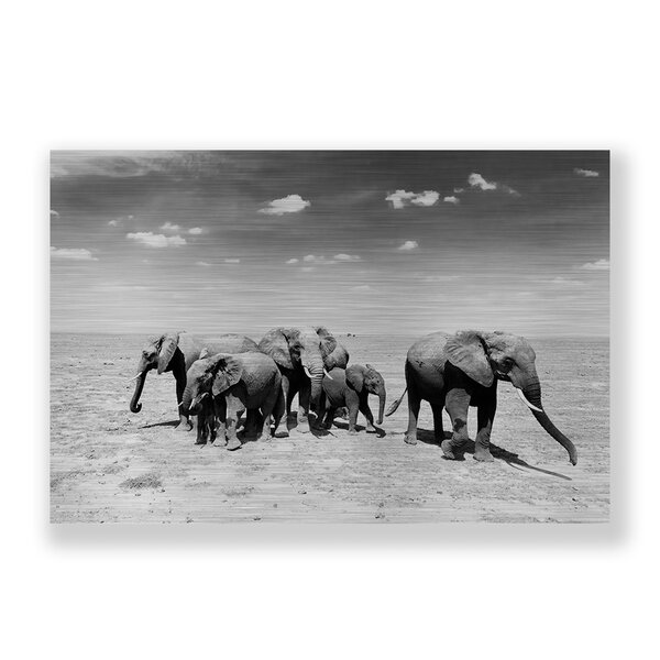 Two Palms Art Bazaar 'elephant Herd' Photographic Print On Plaque & Reviews by Two Palms Art Bazaar