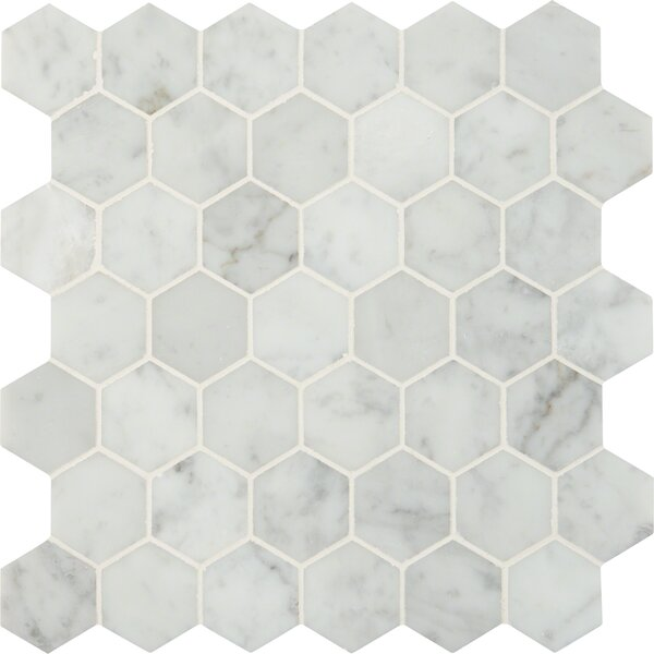 Carrara Hexagon 2 x 2 Marble Mosaic Tile in White by MSI