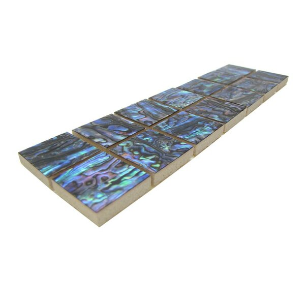 2 x 7.5 Authentic SeaShell Tile Decorative Mosaic in Blue/Green Abalone (Set of 12) by Matrix-Z