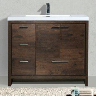 Best Price Almendarez Free Standing Modern 41 Single Bathroom Vanity Set ByLangley Street
