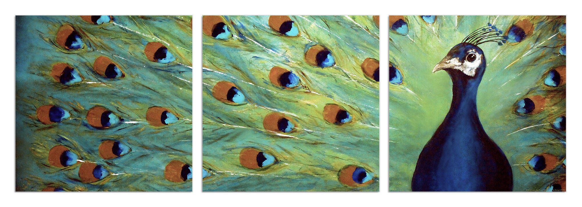 Charmant Prized Peacock 3 Piece Triptych Canvas Wall Art Set