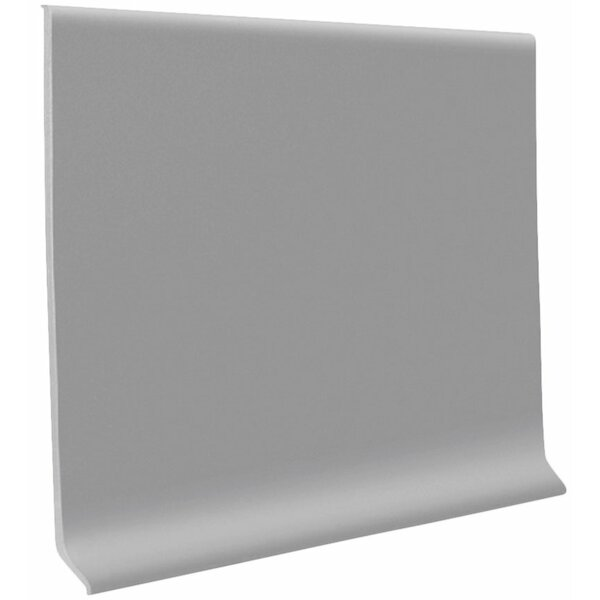 0.13 x 48 x 4 Cove Molding in Slate (Set of 30) by ROPPE